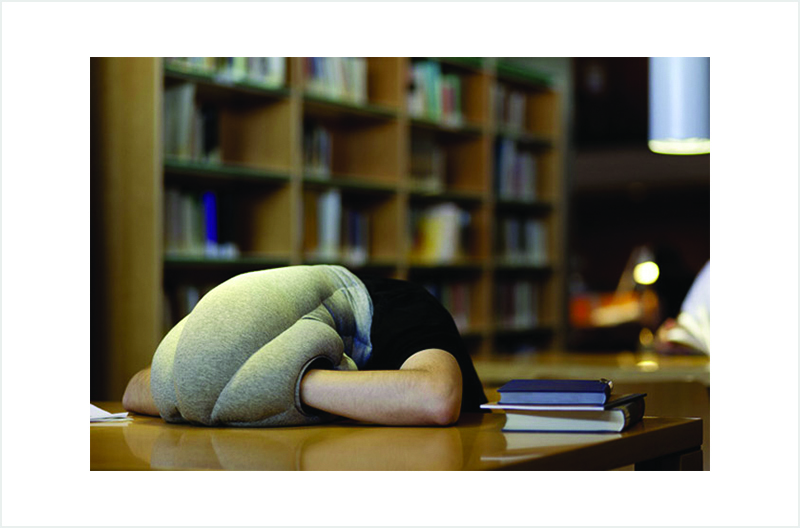 Creative Inventions You Might Need In Dubai-Ostrich Pillow